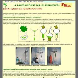 extraction de pigments