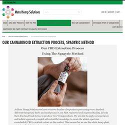 CBD Extraction Process, Spagyrics Explained