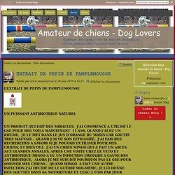 EXTRAIT DE PEPIN DE PAMPLEMOUSSE - Amateur de chiens