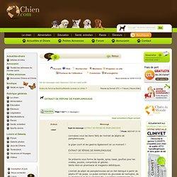 Le forum du chien - EXTRAIT DE PÉPINS DE PAMPLEMOUSSE - Chien.com
