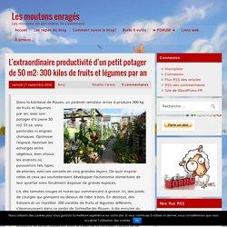 L'extraordinaire productivité d'un petit potager de 50 m2: 300 kilos de fruits et légumes par an – Les moutons enragés