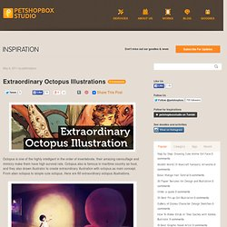 Extraordinary Octopus Illustrations