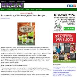 Extraordinary Wellness Juice Shot Recipe - Amazing Herbs and Oils