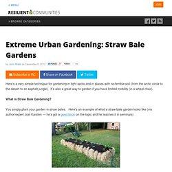 Extreme Urban Gardening: Straw Bale Gardens