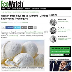 ECOWATCH 27/08/14 Häagen-Dazs Says No to 'Extreme' Genetic Engineering Techniques