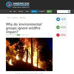 Extremist Greens reveal environmental hypocrisy by ignoring wildfire impact - American Lands Council