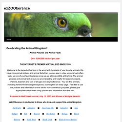 exZOOberance - Celebrating the Animal Kingdom!
