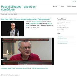 fablab – Pascal Minguet – expert en numérique