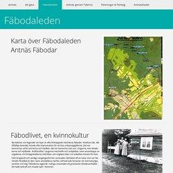 Fäbodaleden - Antnäs