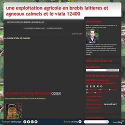 LA FABRICATION DE PANIERS - une exploitation agricole en brebis laitieres et agneaux calmels et le viala 12400