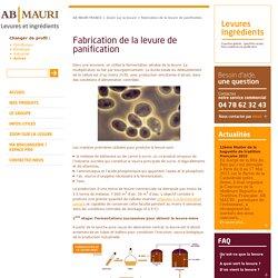 Fabrication de la levure de panification - AB MAURI FRANCE