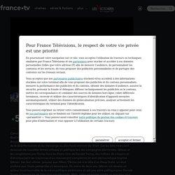 La fabrique du mensonge - Les fake news au pouvoir en streaming - Replay France 5