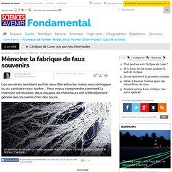 Mémoire: la fabrique de faux souvenirs - Fondamental