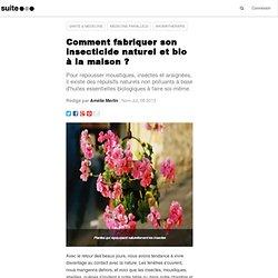 Comment fabriquer son insecticide naturel et bio à la maison ?