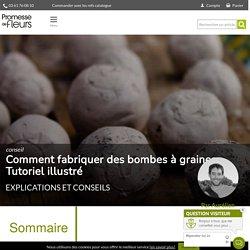 Comment fabriquer des bombes à graines - Tutoriel illustré