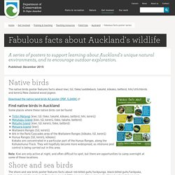 Fabulous facts poster series: Auckland educational resources