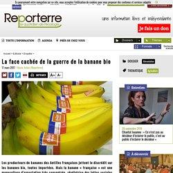REPORTERRE 17/03/17 La face cachée de la guerre de la banane bio