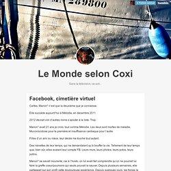 Le Monde selon Coxi, Facebook, cimetière virtuel