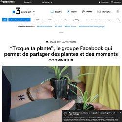 """""""Troque ta plante"""", le groupe Facebook qui permet de partager des plantes et des moments conviviaux"""
