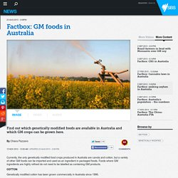 Factbox: GM foods in Australia
