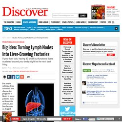 Turning Lymph Nodes Into Liver-Growing Factories | Stem Cell Research