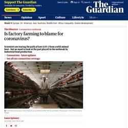 Is factory farming to blame for coronavirus?
