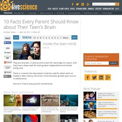 10 Facts Every Parent Should Know about Their Teen's Brain