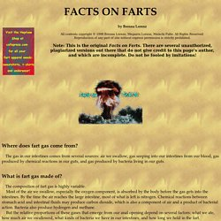 Facts on Farts