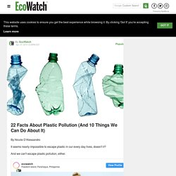 22 Facts About Plastic Pollution (And 10 Things We Can Do About It) - EcoWatch