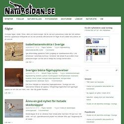 Natursidan