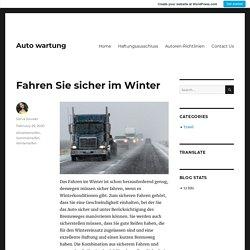 Fahren Sie sicher im Winter – Auto wartung