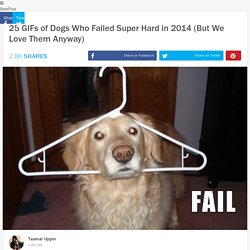 25 GIFs of Dogs Who Failed Super Hard in 2014 (But We Love Them Anyway)