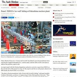 Panel: TEPCO's 'ice wall' failing at Fukushima nuclear plant:The Asahi Shimbun