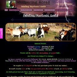 Fainting (Myotonic) Goats
