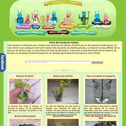 Faire des boutures de plantes