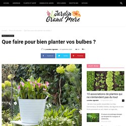 Que faire pour bien planter vos bulbes ?