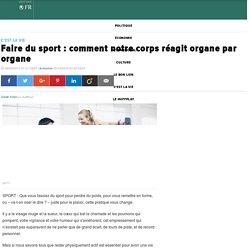 Faire du sport : comment notre corps réagit organe par organe