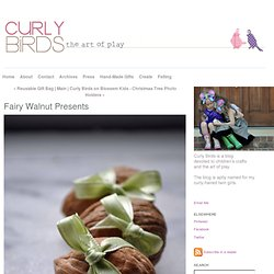 Fairy Walnut Presents - Curly Birds