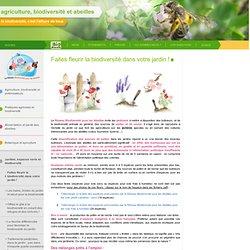 Faites fleurir la biodiversité dans votre jardin !