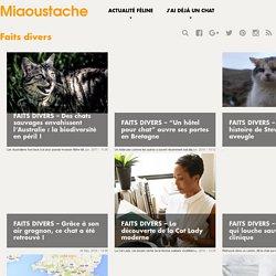 Faits divers < Miaoustache.com
