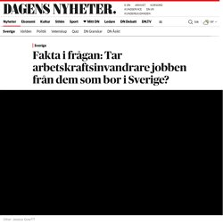 Fakta i frågan: Tar arbetskraftsinvandrare jobben från dem som bor i Sverige?