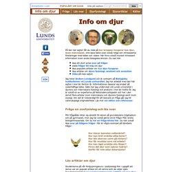 Info om djur: Fakta om hur djur fungerar från Lunds universitet