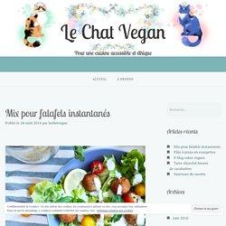 Mix pour falafels instantanés – Le Chat Vegan