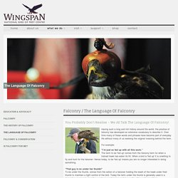 The Language of Falconry