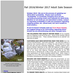 Fall 2014 Adult Sale List