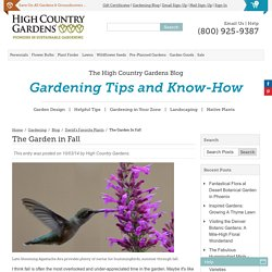 High Country Gardens - The High Country Gardens Blog