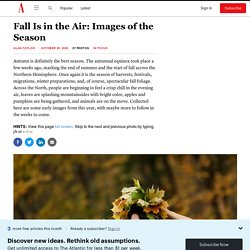 Fall Is in the Air: Images of the Season
