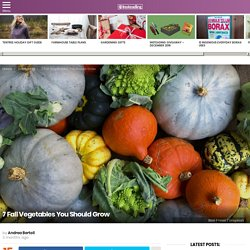 7 Fall Vegetables You Should Grow