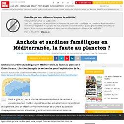 SUD OUEST 05/04/16 Anchois et sardines faméliques en Méditerranée, la faute au plancton ?
