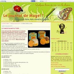 LE FAMEUX BAUME DU TIGRE... - Le journal de Magel !